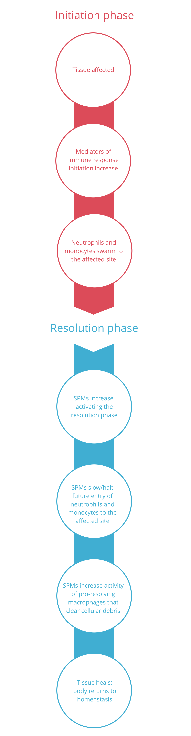 SPMs initiation to resolution infographic